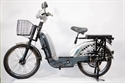 Picture of EASYRIDE ELECTRIC BICYCLES RUNNER